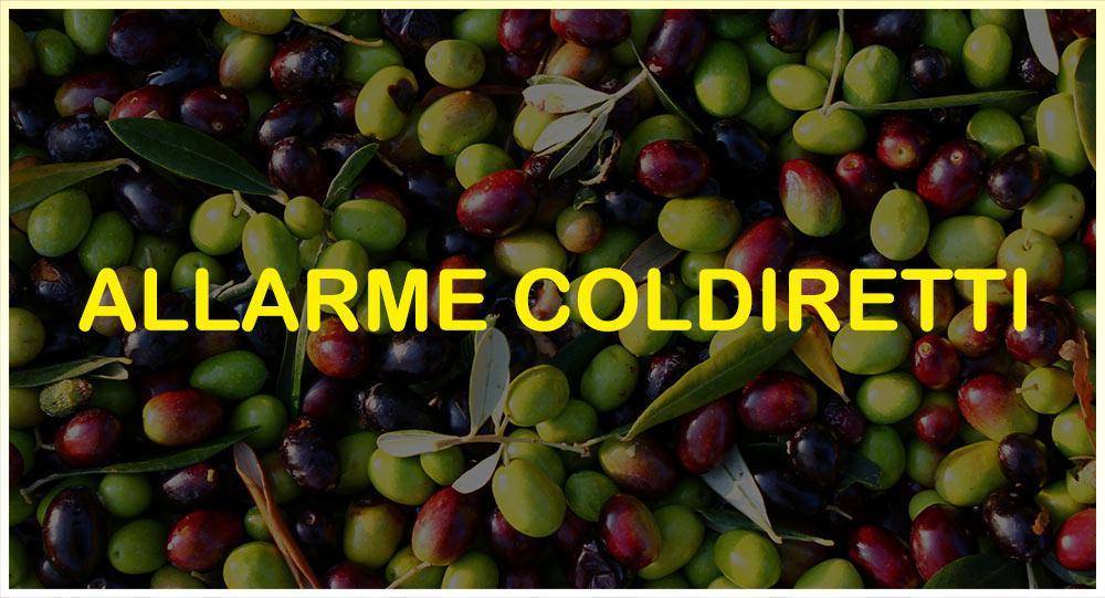 news-site-coldiretti